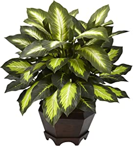 Nearly Natural 6720 inches Triple Golden Dieffenbachia with Wood Vase