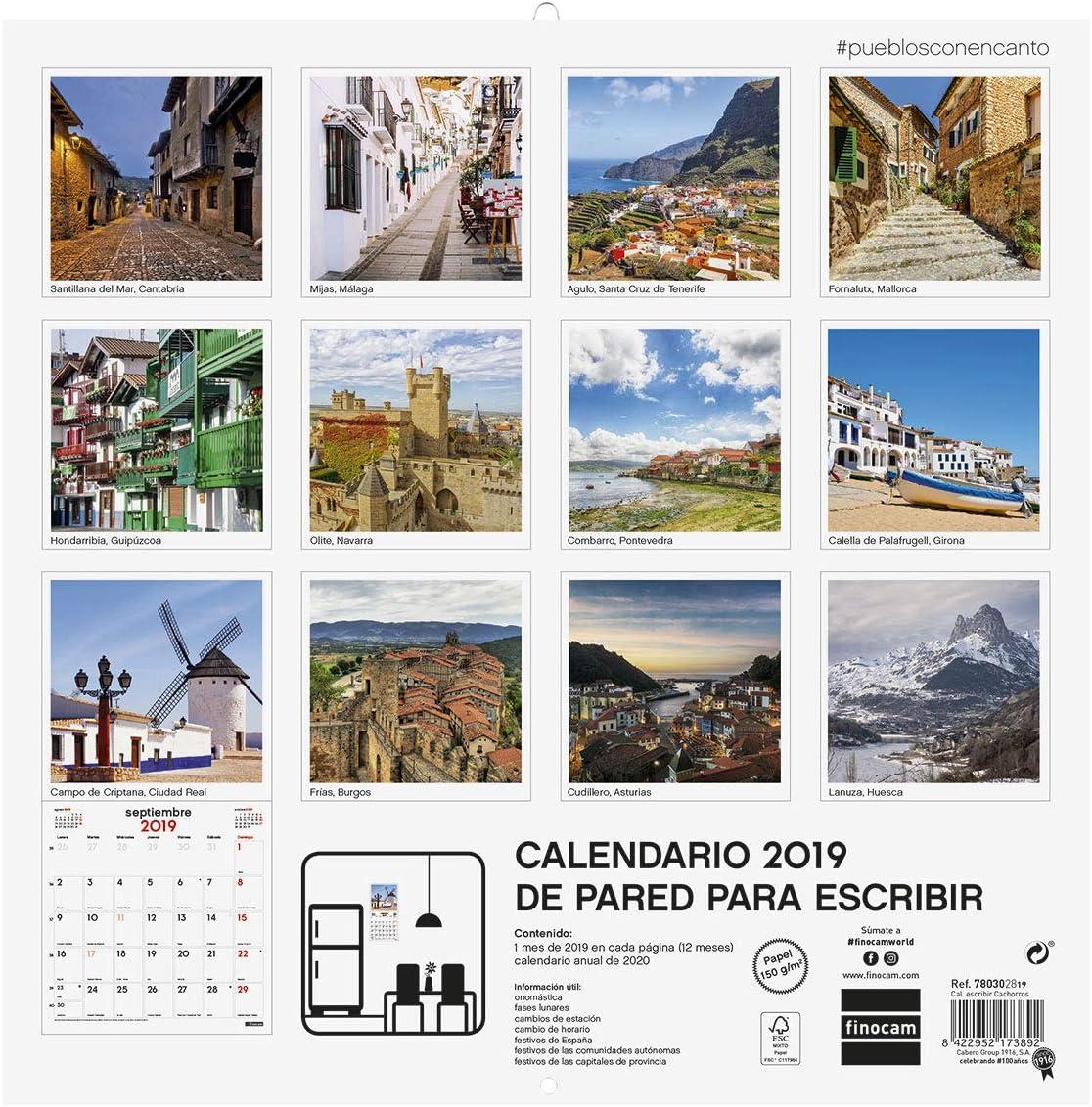 Finocam 780303319 - Calendario de pared 2019: Amazon.es: Oficina y papelería
