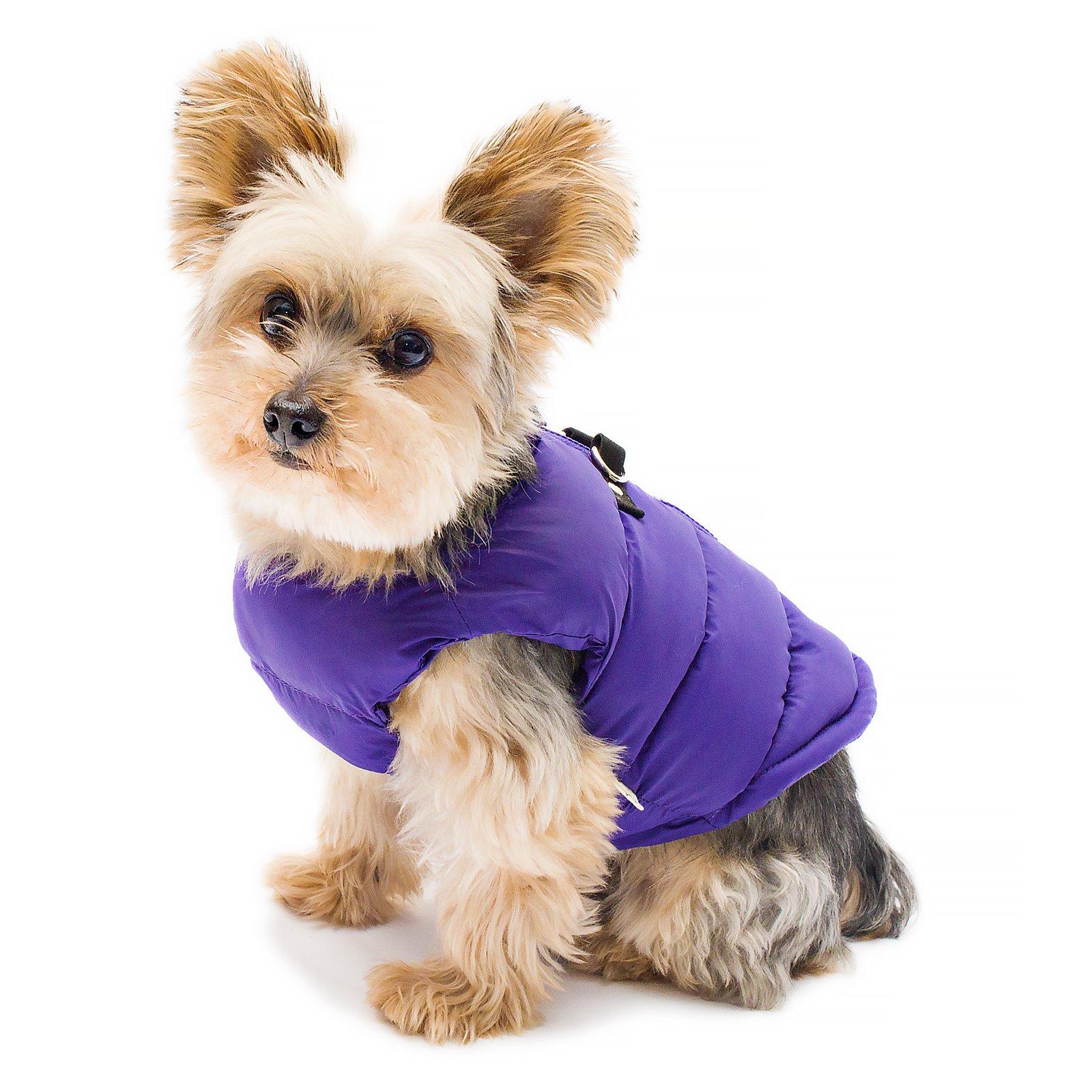 Stinky G Puffy Dog Coat Royal purple Size #14 Large