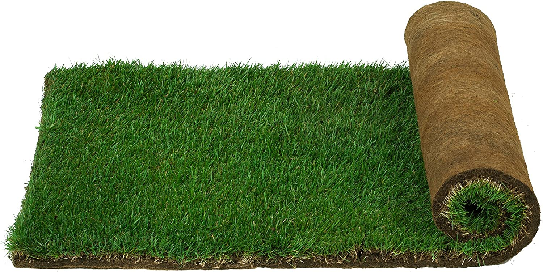 Patio Pet Life Farm Fresh Pet Grass Large