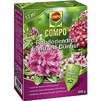 COMPO Rhododendron Langzeit-Dünger, hochwertiger Spezial-Langzeitdünger, für Rhododendren und andere Moorbeetpflanzen wie Hortensien, Azaleen und Heidepflanzen