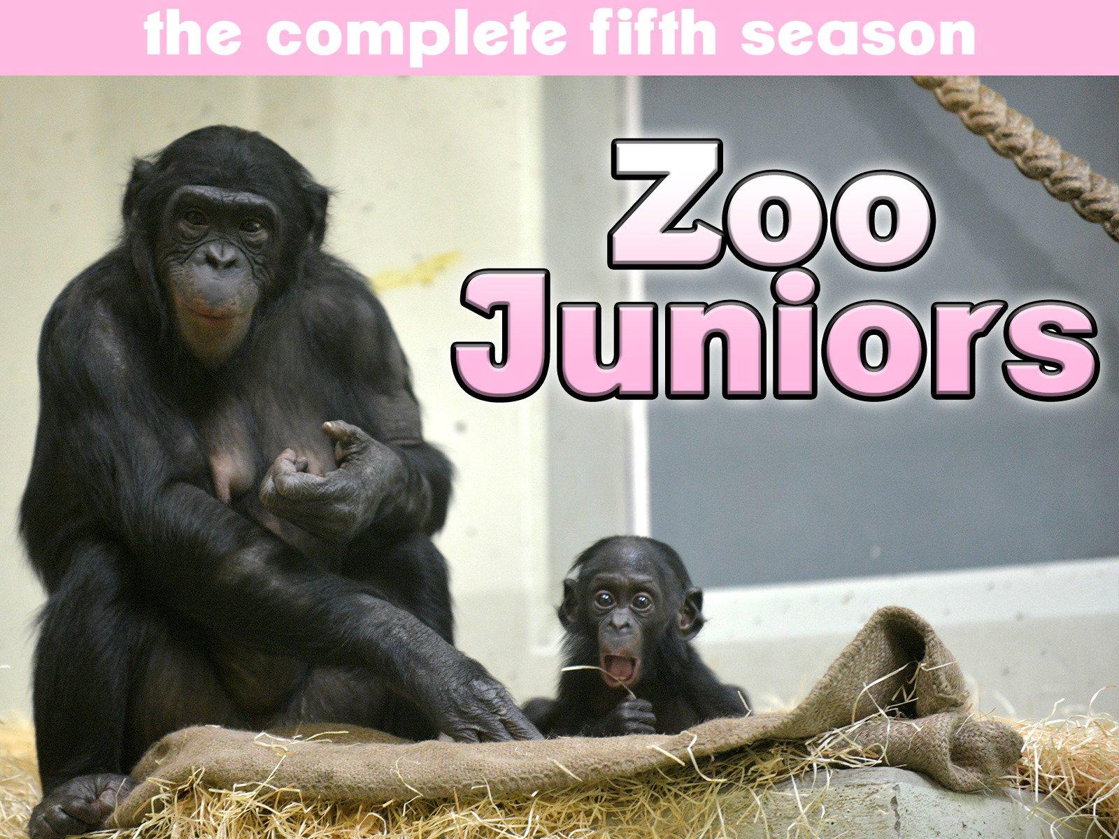 Zoo Juniors on Amazon Prime Video UK