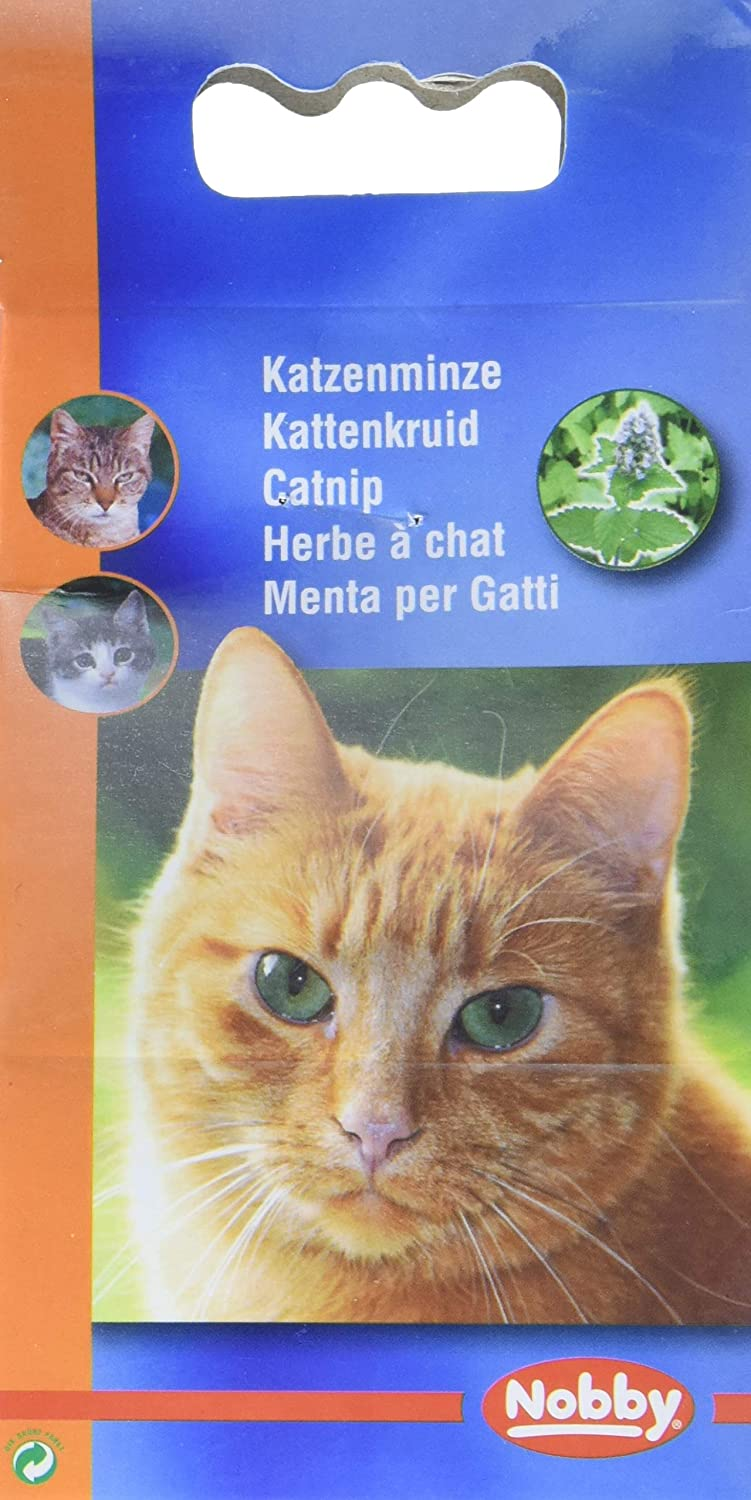 Nobby Herbe à Chat pour Chat 25 g 77501