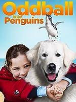 Oddball & the Penguins