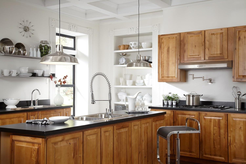 Danze Kitchen Faucets Reviews Danze D455058 Parma Pre Rinse Single Handle Pull Down Kitchen