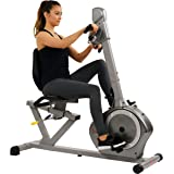 Sunny Health & Fitness Recumbent Bike SF-RB4631 with Arm Exerciser, 350lb,Gray