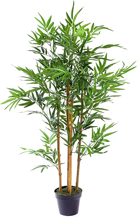 Best Artificial - Árbol de bambú Verde de 90 cm para Oficina ...