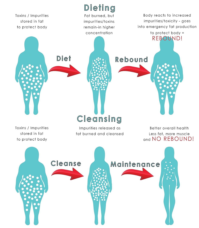 Calcium Bentonite Clay Detox Cleanse - Detox Powder for Weight Loss, Liver  & Colon - Food