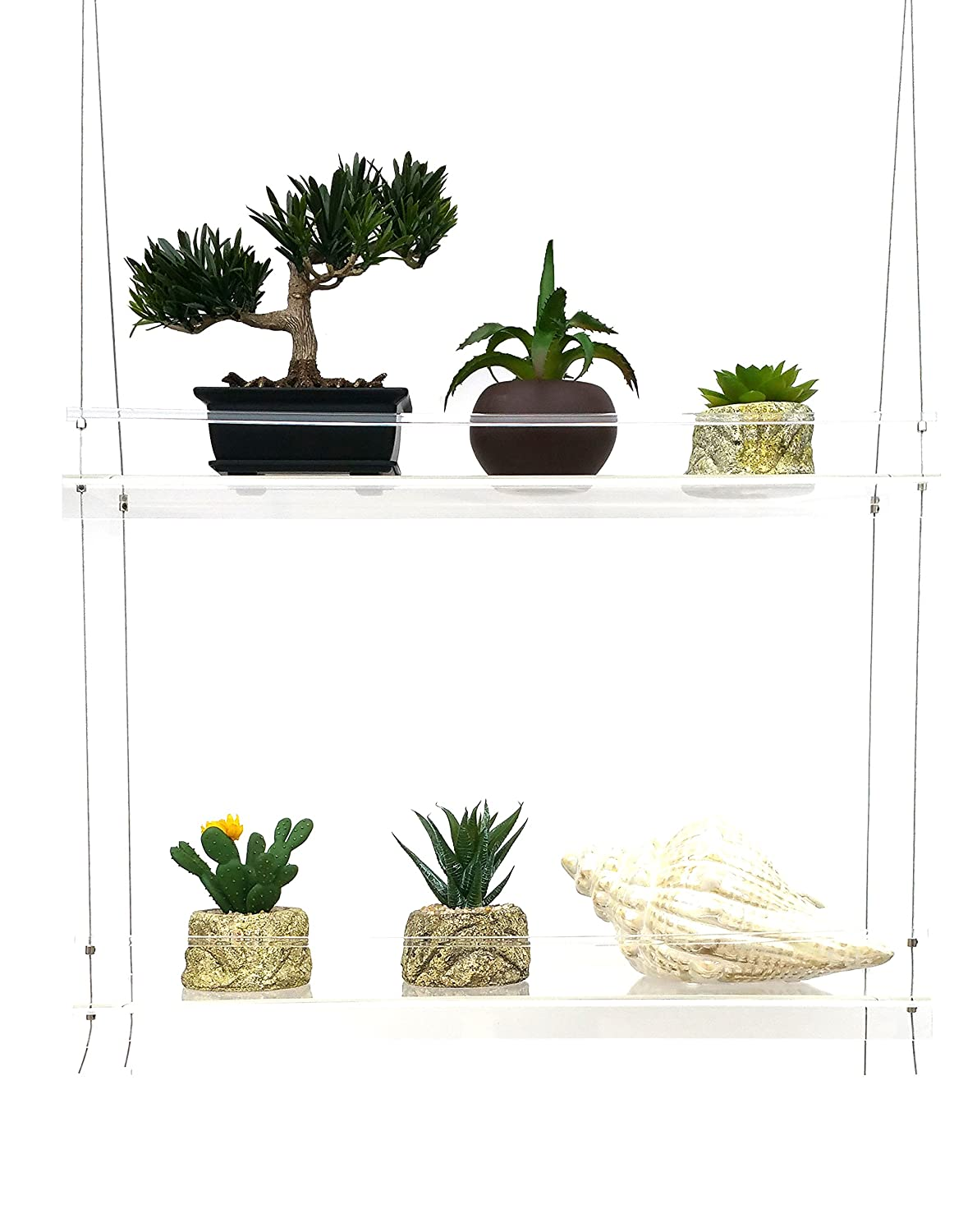 Sunshine Innovations LIMITED TIME LOW PRICE FOR FIRST TIME SELLING ON AMAZON Indoor Window Plant Shelves | For Plants, Herbs, Flowers & Decor | 2 Adjustable Acrylic Shelves