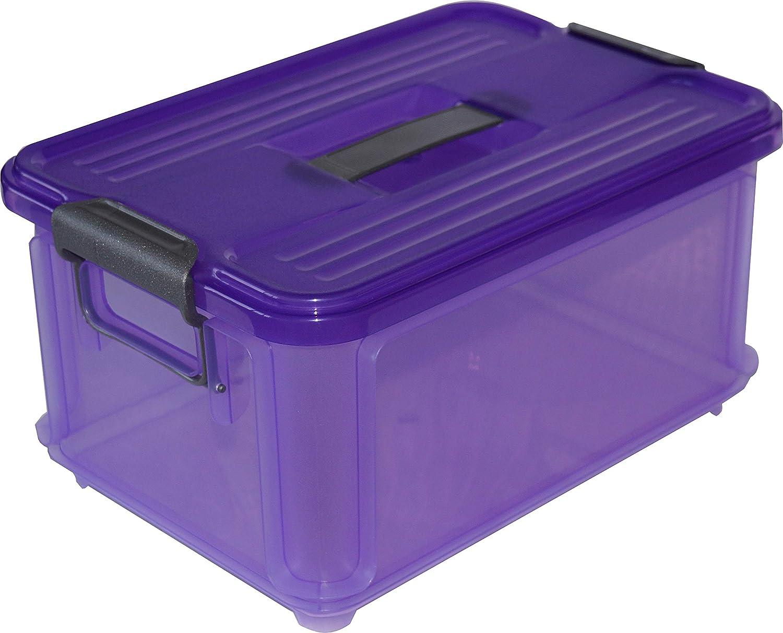 Denox Caja Ordenación, Violeta, 34.5x24x18 cm: Amazon.es: Hogar