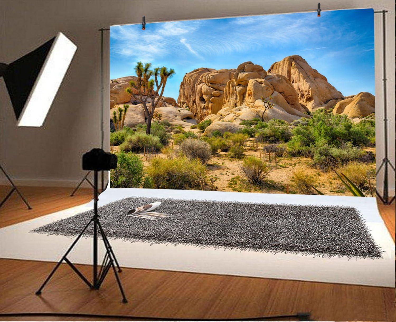 8x6FT Photography Background Western Desert Backdrop Cowboy Weathering Rock Drought-Tolerant Plants Dry Grunge Landscape Cactus Joshua Tree National Park Photo Portrait Vinyl Studio Prop