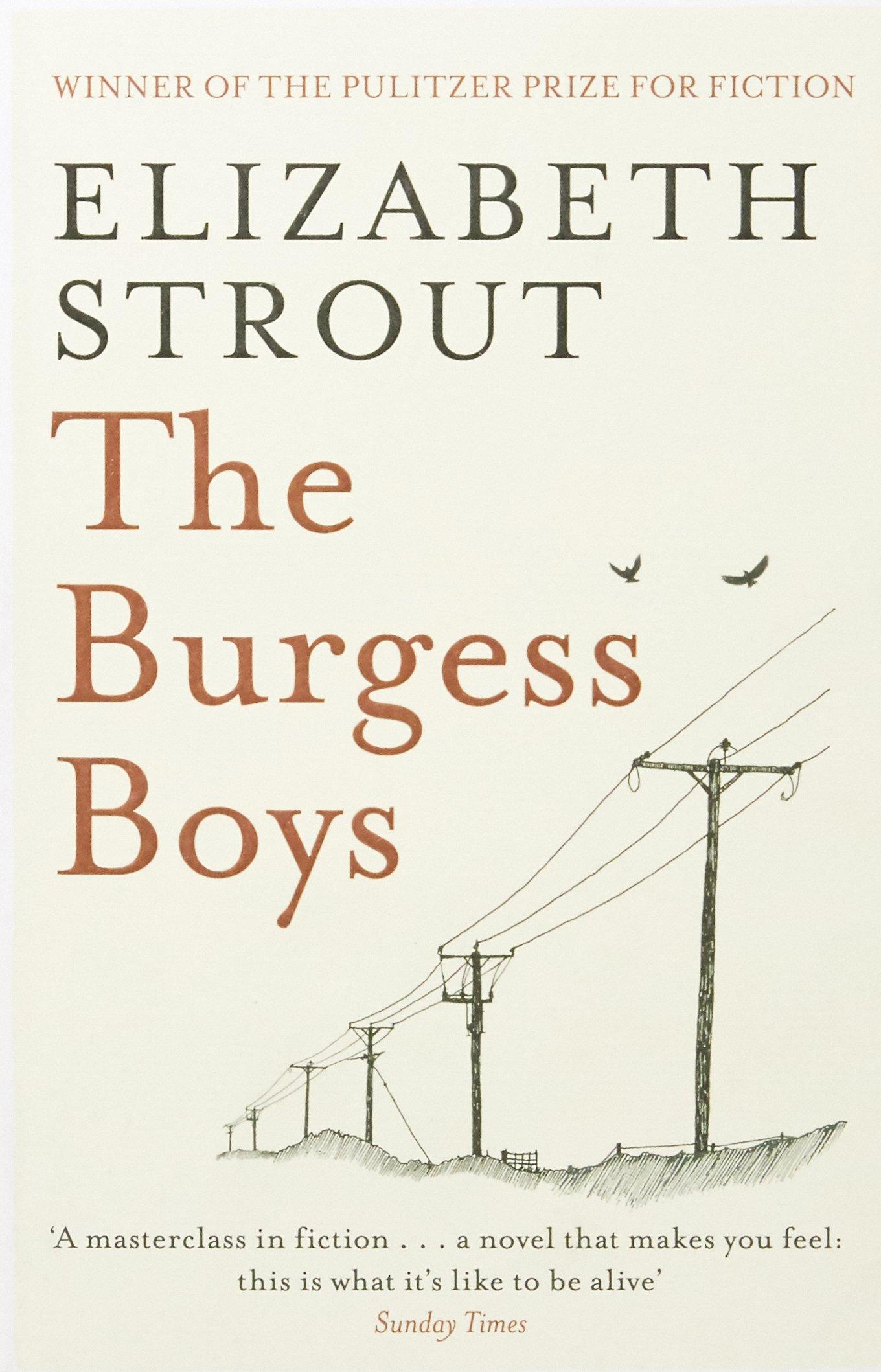 The Burgess Boys ebook