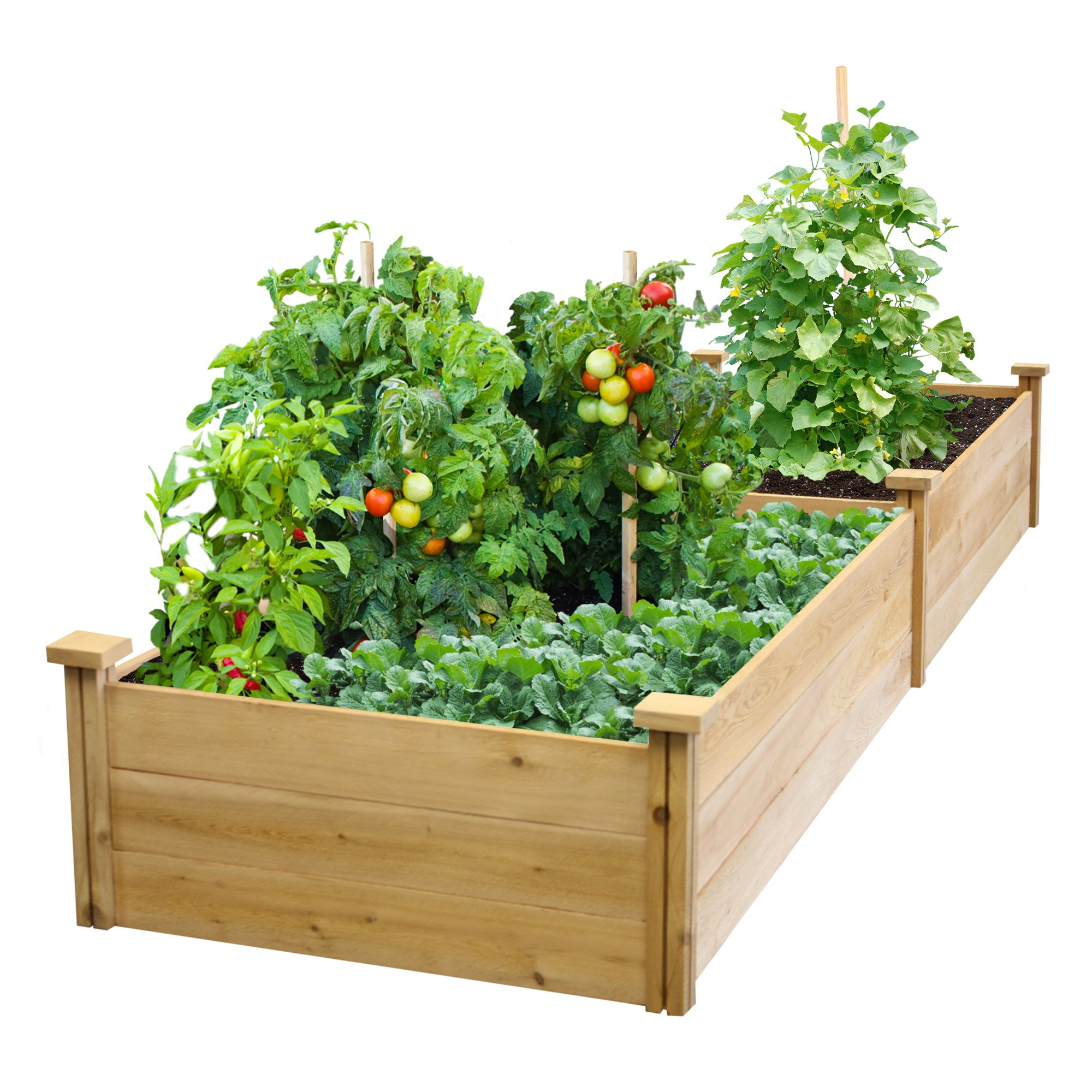 Best Value Cedar Raised Garden Bed Planter 24'' W x 96'' L x 10.5'' H