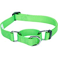Blueberry Pet Safety Training Martingale Dog Collar, Neon Green, Small, Heavy Duty Nylon Adjustable Collars for Dogs