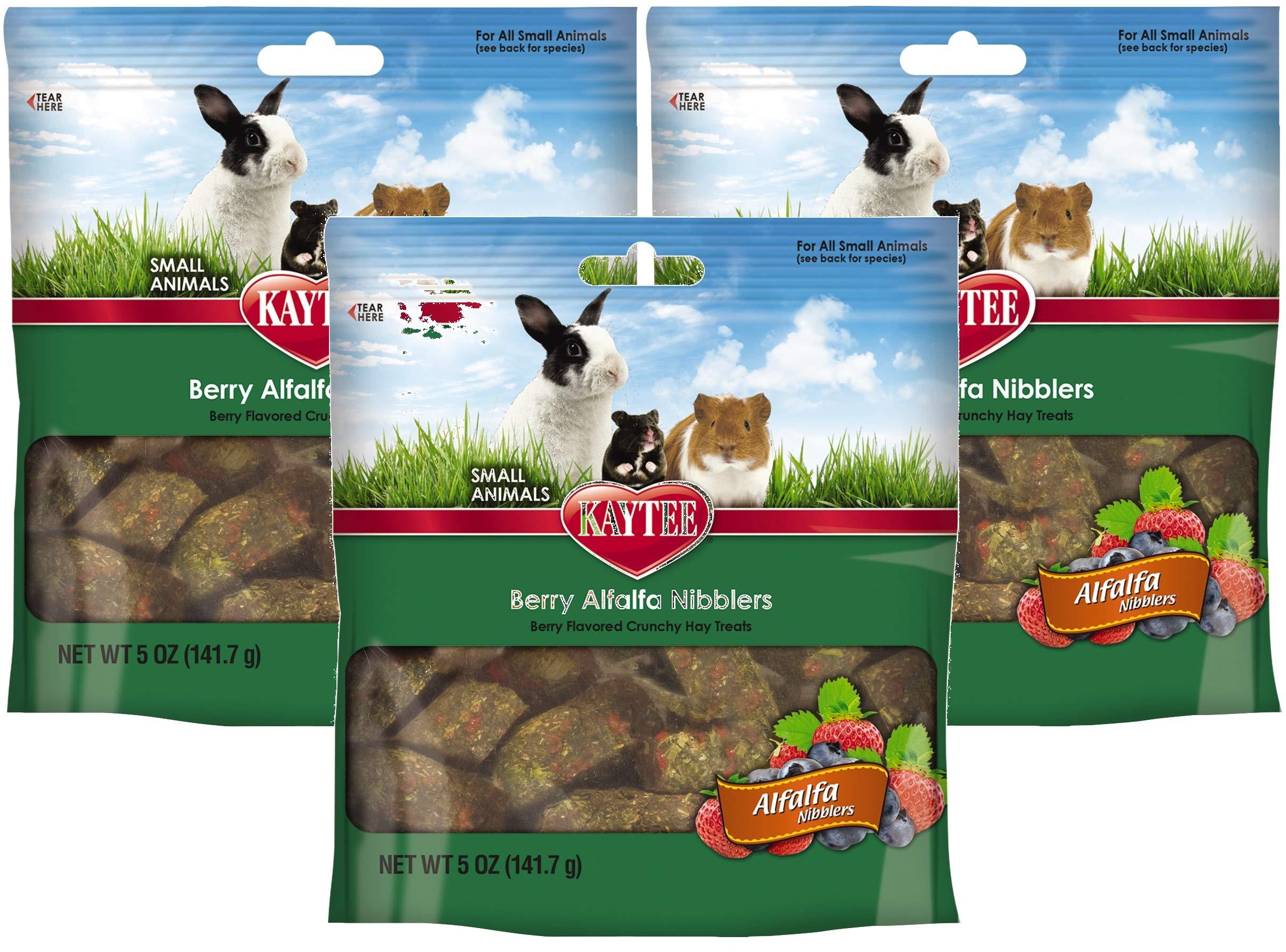 Kaytee 3 Pack of Nibblers Berry Small Animal Treats, 5 Ounces Per Pack by Kaytee