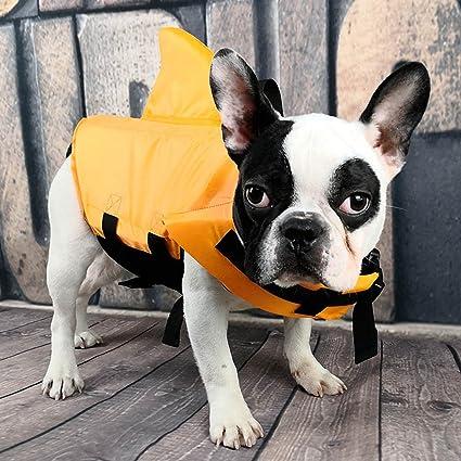 amazon com papring dog life jacket shark dog life jacket safety