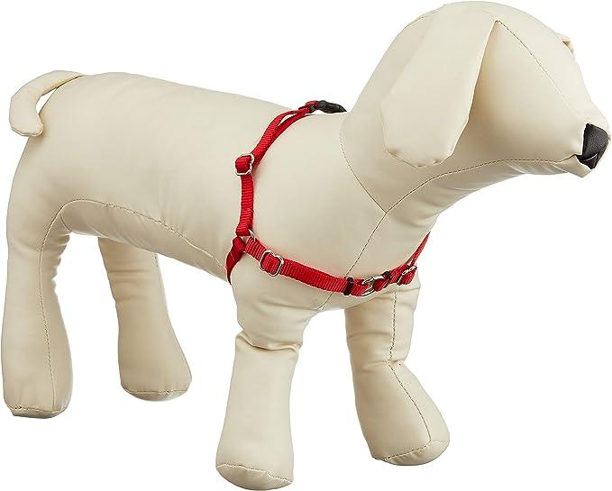 Sense-ible no-pull Arnés perro XS rojo: Amazon.es: Hogar