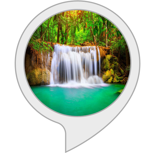 Relaxing Music: Sounds of Forest and Zen Waterfall