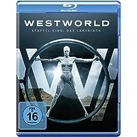 Westworld - Die komplette 1. Staffel [Blu-ray]