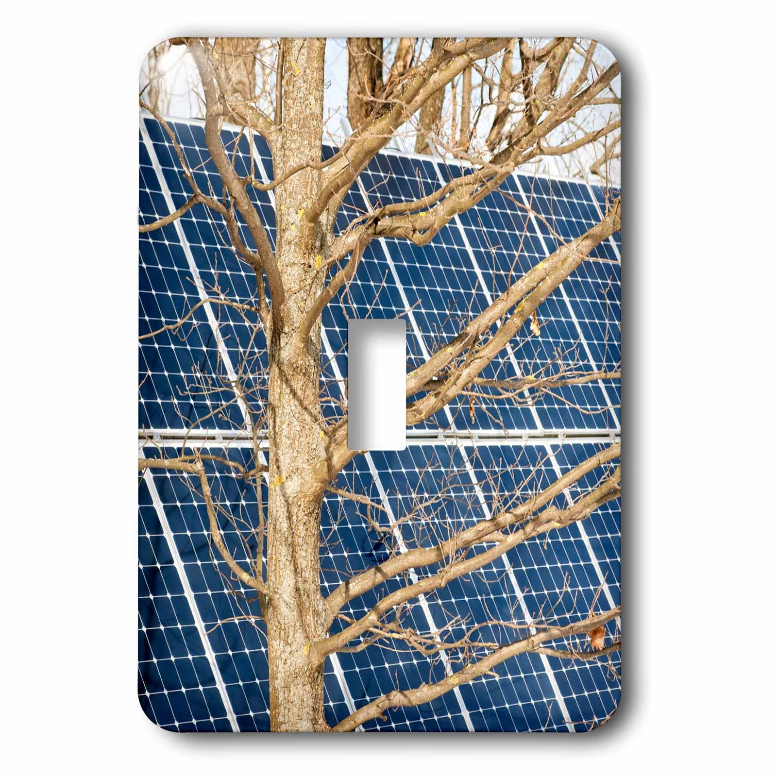 3dRose Alexis Photography - Objects - Young leafless oak tree and a solar power panel. Both turned sunward - Light Switch Covers - single toggle switch (lsp_283847_1)