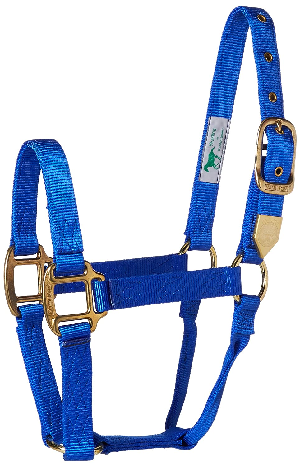 bluee Yearling, 300-500 pounds bluee Yearling, 300-500 pounds Hamilton 1-Inch Nylon Horse Halter, Yearling Size (300-500-Pounds), bluee