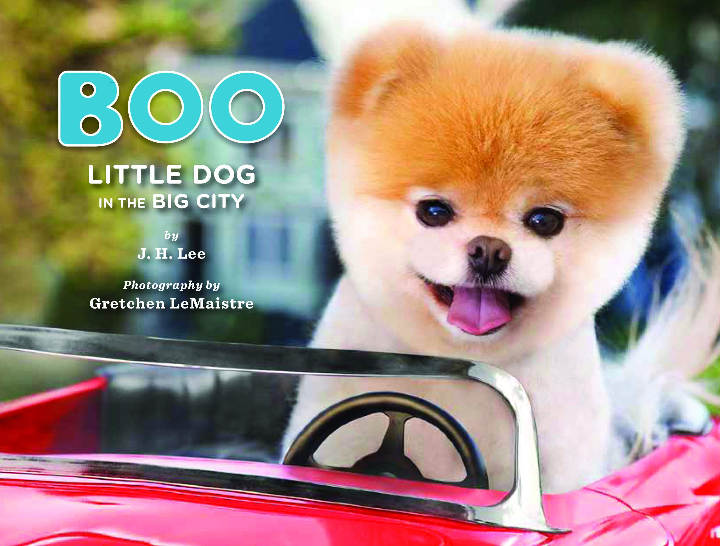 Ebook Boo The Life Of The Worlds Cutest Dog Halloween Books For Kids Halloween Books For Toddlers Cute Halloween Stories By Jh Lee