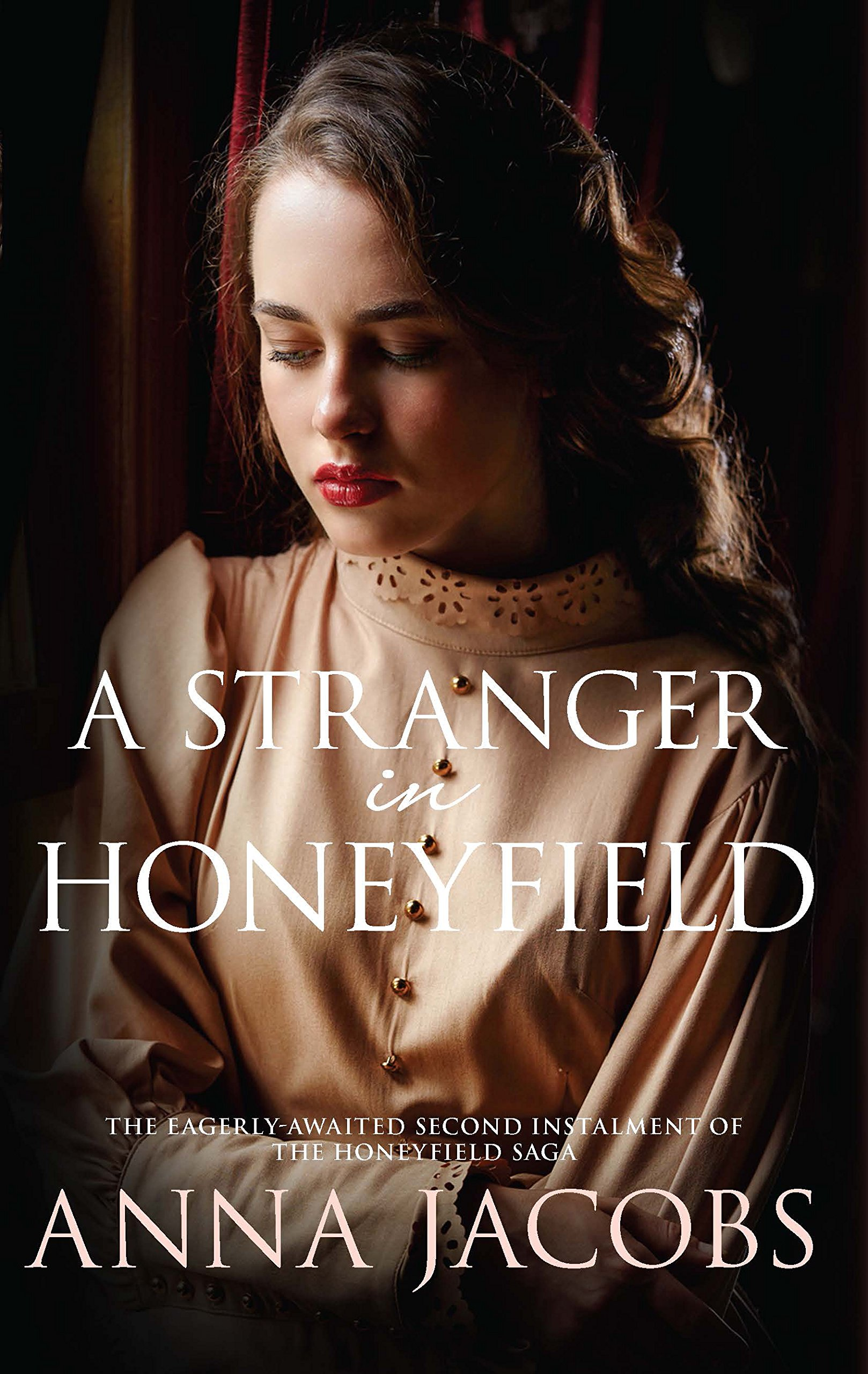 Download A Stranger in Honeyfield (The Honeyfield Series) PDF