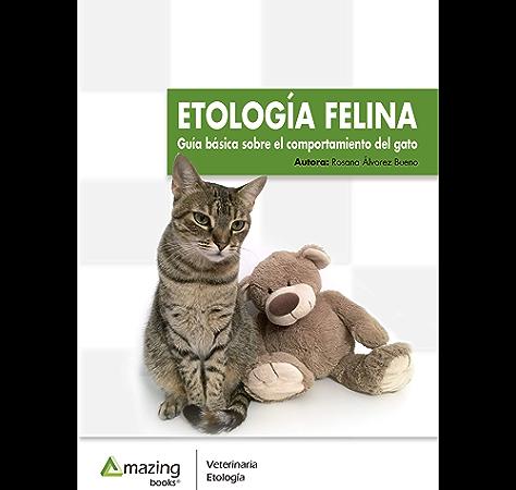 idioma felino é bom