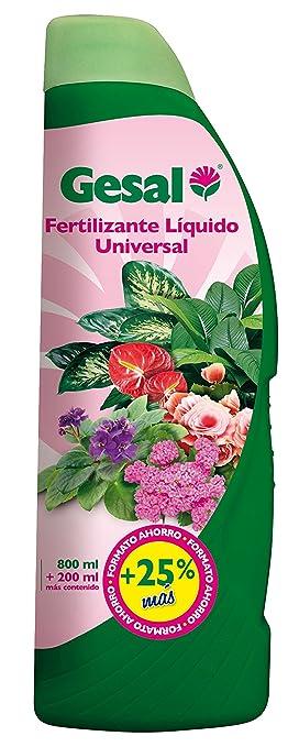 Gesal Cuidado de las plantas de interior y de terraza Fertilizante liquido universal, 1000 ml, 7x9x26 cm: Amazon.es: Belleza