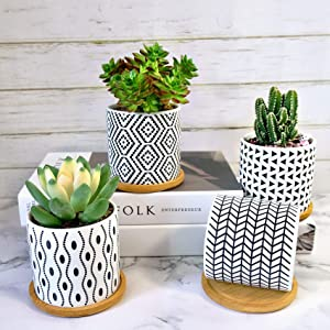 DUFILO Succulent Pots 4 Pack,3.5 Inch Ceramic Flower Planters with Drainage for Mini Plants Live,Modern Style Small Pot Planter for Cactus,Decor for Home and Office,Gifts for Women,Kids,Mom-No Plants
