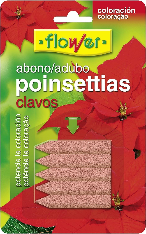 Flower 10839 10839-Abono Clavos, 5 Unidades, No Aplica, 16x1x10 cm