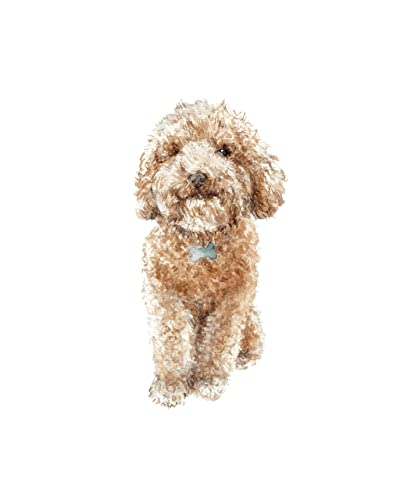 Amazoncom Limited Edition Apricot Poodle Dog Print 85x11