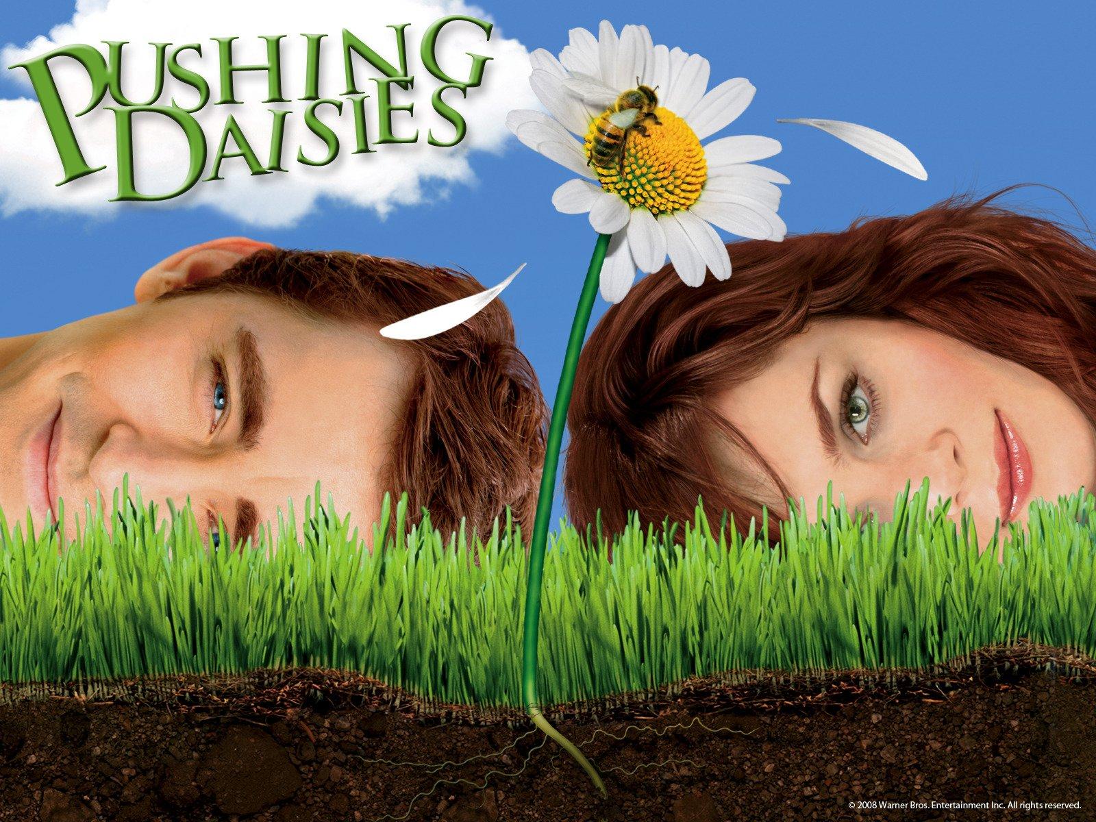 cd80041a3a60 Amazon.co.uk  Watch Pushing Daisies Season 1
