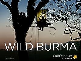 Wild Burma