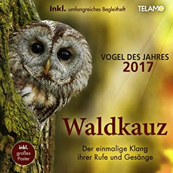 Vogel des Jahres 2017 von Goebel großer Jahresvogel Höhe 17 cm Der Waldkauz