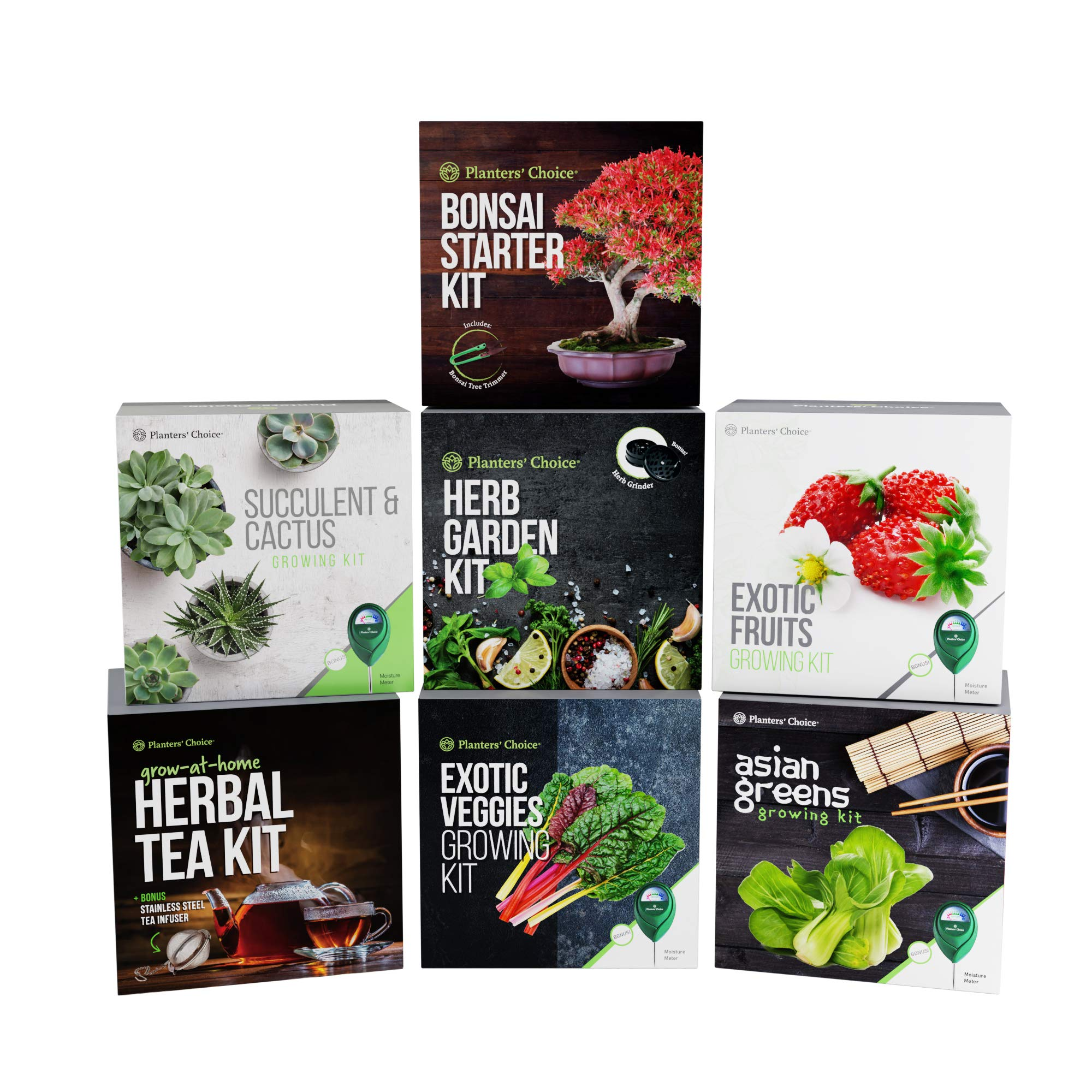 Grow 4 of Your Own Organic Herbal Tea Kit + Stainless Steel Tea Infuser | Chamomile, Peppermint, Lemon Balm, Red Clover | Everything Included: Pots, Soil, Seeds, Booklet, Bamboo Plant Labels by Planters' Choice (Image #6)