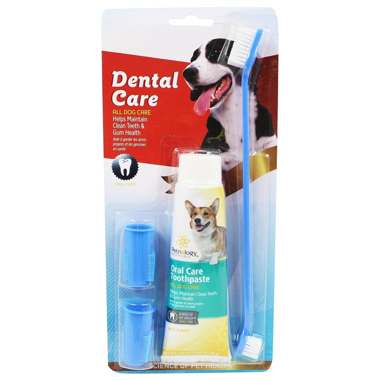 Takestop® Juego Cepillo largo doble + Pasta de dientes + 2 cabezales dedo para perro animales Limpieza Cuidado Masaje Higiene Dental Color aleatorio: ...