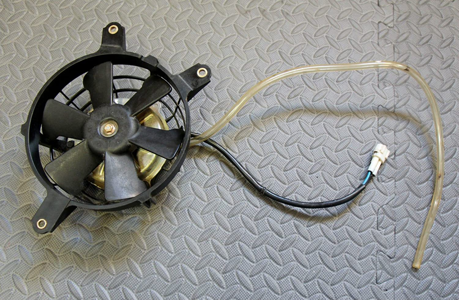 Amazon.com: 2004 2009 Yamaha YFZ450 YFZ 450 Radiator coolant fan & wiring 04  05 06 07 08 09: Everything Else