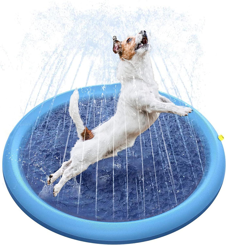 piscina para perros de plástico