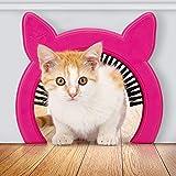 PAWSM Interior Cat Door, Pet Door for Cats, Cat Door Hides Litter Tray, Cat Door with Brush, Fits Cats Up to 20lbs