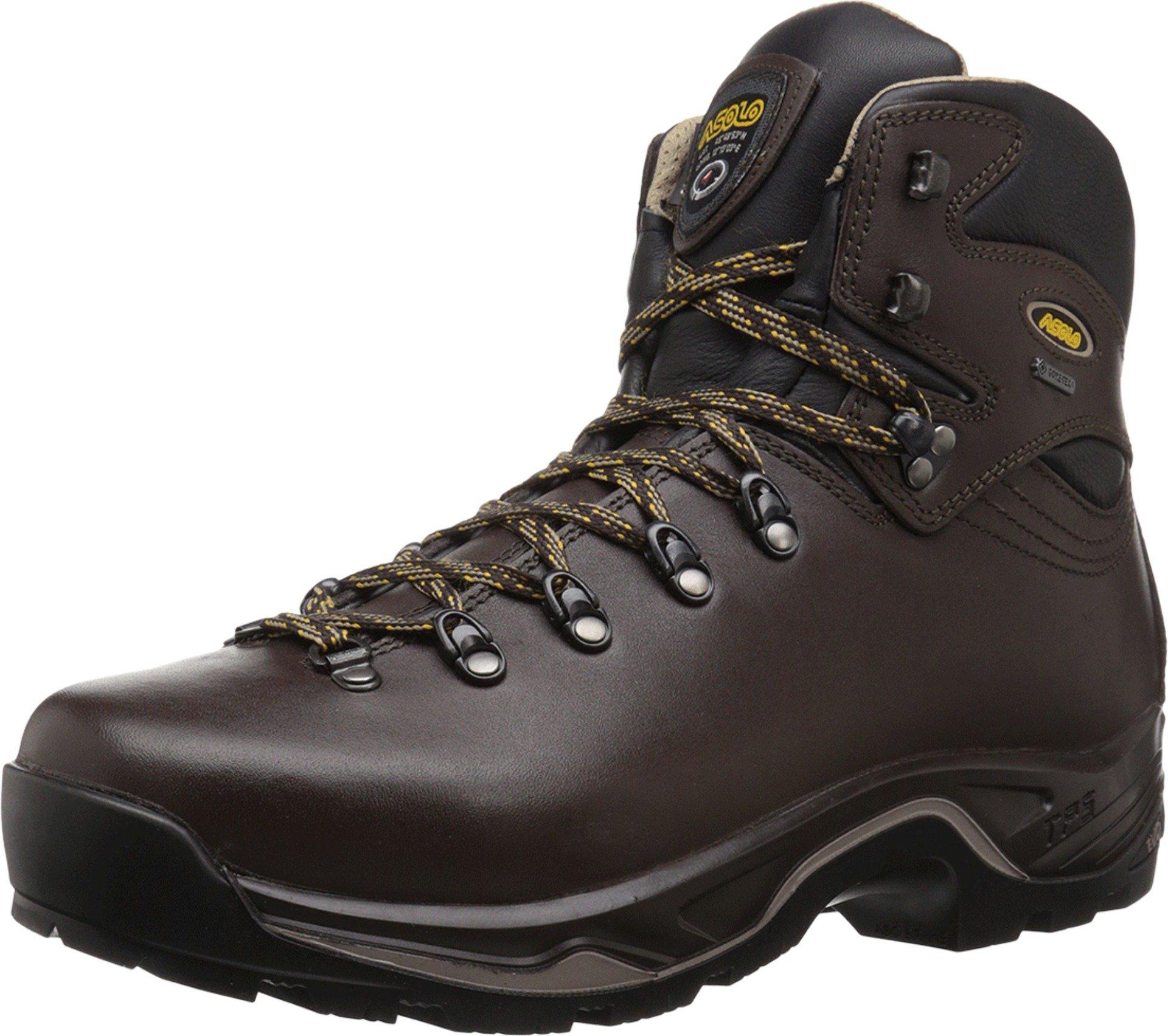 Asolo TPS 520 GV Boot - Men's Chestnut 7