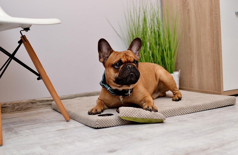 Lauren Diseño hundematte Demi 70 cm x 60 cm x 3 cm rojo acolchada | cama para perros | perro Cojín | Espacio Dormir para perros grandes y pequeñas ...