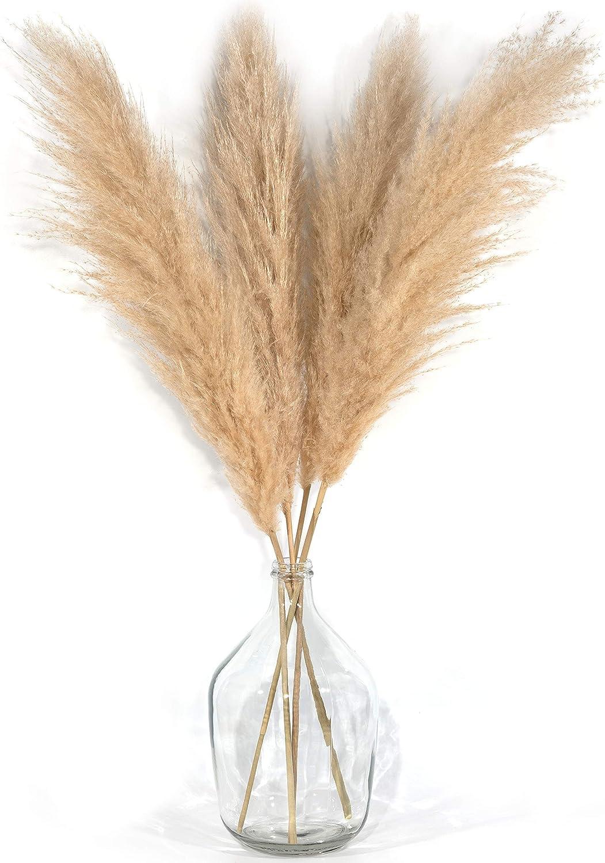 4 Stems Pampas Grass Tall Extra Fluffy 48