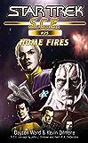 Star Trek: Home Fires (Star Trek: Starfleet Corps of Engineers Book 25)
