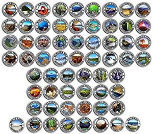 Sheet of All 62: 2.5 inch Round National Park Stickers (rv Hike np Laptop Travel Set)
