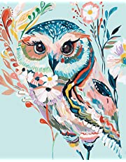ESOOR DIY Paint by Numbers for Adults,Oil Painting Paint by Number Kits,DIY Oil Painting Kit for Kids Beginner Color owl 16X20 Inch