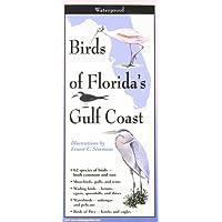 Birds of Florida's Gulf Coast: Folding Guide;Foldingguides