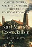 Karl Marx's Ecosocialism: Capital, Nature, and the Unfinished Critique of Political Economy