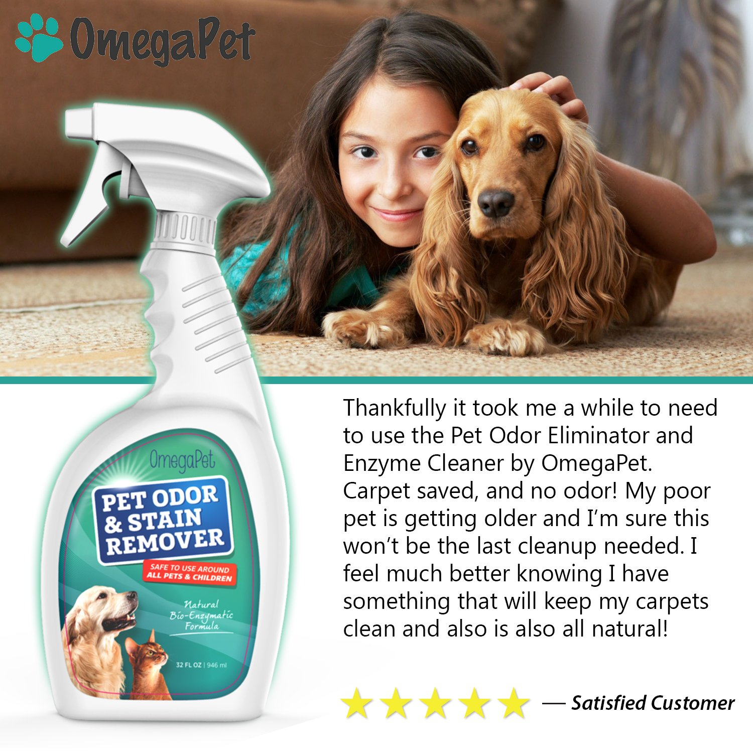 amazoncom pet urine remover and odor neutralizer best used as cat urine remover dog urine remover and stain remover on carpet u0026 hardwood