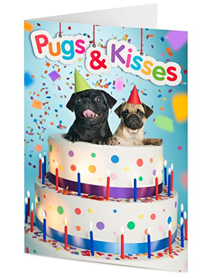 Tremendous Pugs Kisses Two Pugs Emerge From Giant Birthday Cake Birthday Funny Birthday Cards Online Bapapcheapnameinfo
